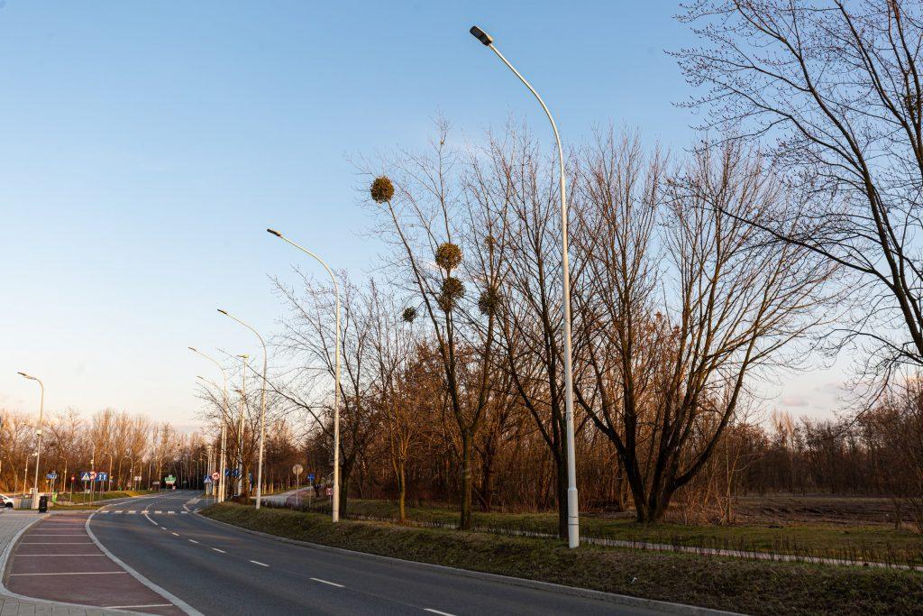oswietlenie drogi